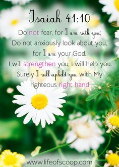 """""""I can't let myself dream that because it doesn't feel safe."""" Ouch. Those were the words that made me realize I often doubt God's plan for my life. Do you struggle with this, as well? Come chat through who God is, why He is trustworthy, and the one thing we can do to begin living in trust!"""