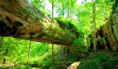 EnjoyIllinois.com | Pomona Natural Bridge his natural geologic sandstone formation spans 90 feet across a ravine in a mature beech, oak and hickory forest. Nearby is an easy hiking trail dotted with picnic sites. #travel #Illinois #familyfun