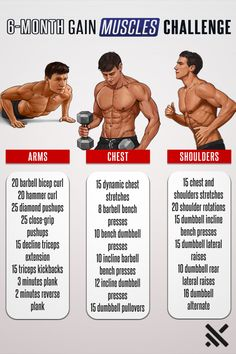 300 Workout, Gym Workout Chart, Hiit Workout At Home, Gym Workout Videos, Weight Training Workouts, Gym Workout For Beginners, Home Workout For Men, Home Weight Training, Push Up Workout