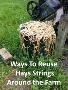 Adapted from In a pinch baling twine can be used to: make a makeshift halter make a makeshift leadrope temporarily fix fence boards and gates replace broken blanket straps make a makeshift martinga. Horse Barns, Horses, Horse Stalls, Horse Barn Plans, Farm Hacks, Horse Care Tips, Future Farms, Horse Crafts, Dream Barn