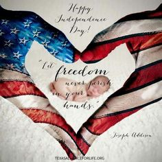 how fly flag veterans day
