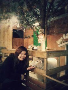 Lamb Cafe at Hongdae, Seoul~.~
