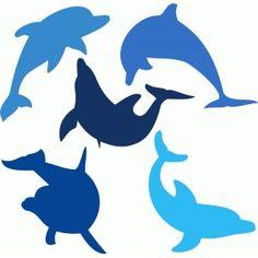 dolphins set