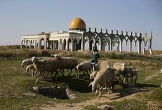 A Palestinian boy herds sheep in front of the ruins of Yasser Arafat international airport, which was bombed by Israel, at Rafah in the southern Gaza Strip