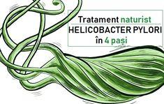 Tratament NATURIST pentru HELICOBACTER PYLORI în 4 pași