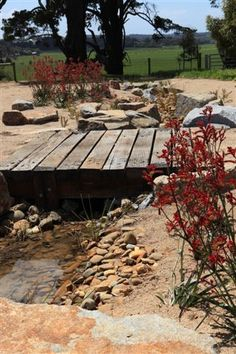 dry creek bed foot bridge