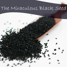 Black Seed: the Remedy for Everything But Death