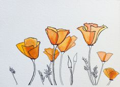"""California Poppies"" Original Fine Art Ink Drawing on Paper by Allyson Kramer"
