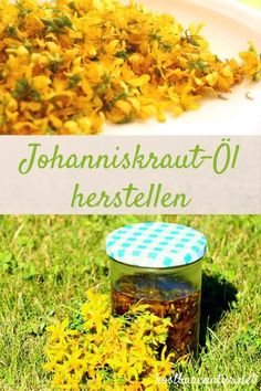 Johanniskrautöl hilft der Haut sich selbst zu heilen und macht sie durchlässiger für die Sonne an dunklen Tagen. Erfahre, wie du das Öl selbst herstellst!
