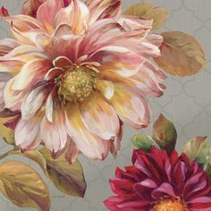 Classically Beautiful III by Lisa Audit art print