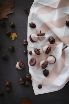 Die Eicheln Die Eicheln bestehen aus einfachen Schokoladenkeksen die ich selbst gemacht habe,  Baisers und Schokoladenganache.