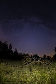 https://flic.kr/p/wpE7Ap | clear sky | it is not easy to find a very dark place in our over populated country, but when you do its is breathtaking. but next time i must find some one to come with me, sitting al alone in a forest is getting on your nerves