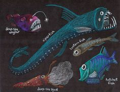 Ellen McHenry's Basement Workshop:::Glow-in-the-dark deep sea fish art project & many other very interesting educational projects {a favorite} oil pastels on black paper Drawing Projects, Art Projects, Deep Sea Creatures, 4th Grade Art, Fish Drawings, Deep Sea Fishing, Arts Ed, Fish Art, Art Classroom
