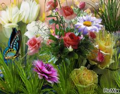 The perfect Spring Animated GIF for your conversation. Discover and Share the best GIFs on Tenor. Flowers Gif, Butterfly Flowers, Flowers Nature, Pretty Flowers, Butterflies, Beautiful Gif, Beautiful Roses, Dank Gifs, Corporate Flowers