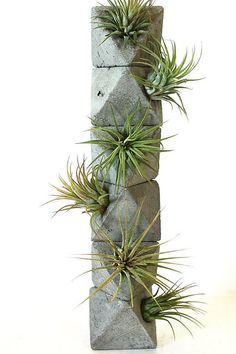 Octahedron Totem with Air Plants Heart Chakra by AnsonDesign