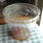 Knat, Fruit Fly Trap - Use old fruit or vinegar in cup. Top with cone or plastic wrap to trap.