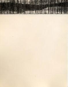 Nakazora - Masao Yamamoto.La engañosa simplicidad japonesa.