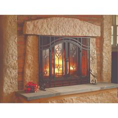 Plow & Hearth Single Panel Steel Fireplace Screen & Reviews | Wayfair Fireplace Screens With Doors, Fireplace Screens, Mesh Screen, Door Hold, Brick Fireplace Makeover, Glass Panels, Iron Entry Doors, Fireplace, Paneling