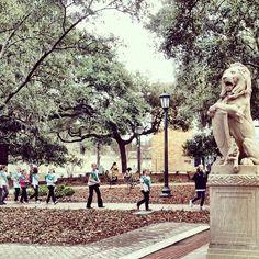 Girl Scouts exploring Chippewa Square in Savannah