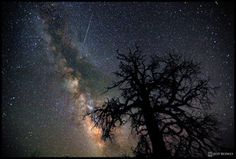 Photographer Jeff Berkes caught this Perseid meteor over Dead Horse Point State Park, Utah, on July 30, 2011. (SPACE.com)