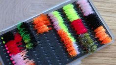 FNF Jelly Fritz review | Fly&Lure