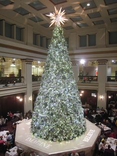 Marshall Field's (Macy's) Christmas Tree -- 2009