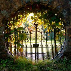 Mystery beyond gate. Light draws in. Planting slightly obscures. Round, similar to moon gate. Garden Gates, Garden Tools, Moon Gate, Wrought Iron Gates, Gate Design, Gardening For Beginners, Dream Garden, Garden Inspiration, Garden Landscaping