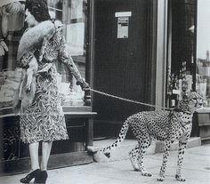 Ultimi sgoccioli di settembre parte 75. Cosa troverete: l'attrice Phyliss Gordon che fa shopping col suo ghepardo fashion, un incidente d'auto causato da due donne in shorts nel 1937, Ernest Heming...