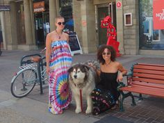 Hippie chicks and dogs go together like hippie chicks and dogs! Great Maxi dress in both black and white. Love the Tie Dye girls! Hippie Chick, Tie Dye, Strapless Dress, Black And White, Girls, Dogs, Dresses, Fashion, Strapless Gown
