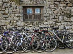 IteNovas | Arriva dall'Olanda la prima bici ad energia solare, coi pannelli fotovoltaici sopra le due ruote. | È la prima con i pannelli fotovoltaici posizionati sopra le ruote, può viaggiare liberamente senza alcuna ricarica ma per ora ha prezzi poco accessibili.