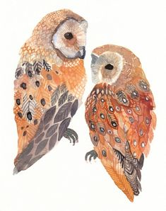 Two Barn Owls print by Michelle Morin