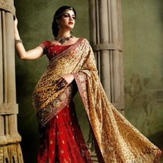 Stunning bridal sarees in a variety of designs. Choose from a vast bridal sarees collection or pick your favorite bridal lehenga in gorgeous colors and bespoke fabrics. Saree Collection, Bridal Collection, Red Saree, Sari, Bridal Sarees Online, Indian Bridal Wear, Women Life, Bridal Lehenga, My Wardrobe