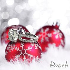 happy holidays from paveb.com  family.