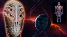 Novas evidencias sugerem que os seres humanos não são da terra e que ETs avançados nos jogaram aqui - Sempre Questione