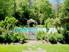 View of the backyard with greenery and a swimming pool