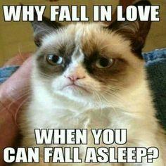 Grumpy Cat meme: love vs. sleep