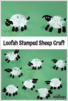 Sheep Craft for Kids | Painting with a Loofah