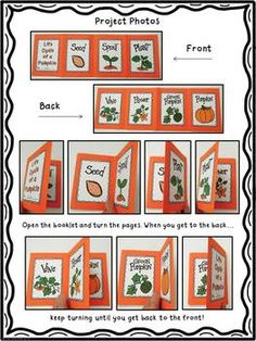 Pumpkin Life Cycle - This is a fun project for students to sequence the life cycle of a pumpkin. Students will love making this simple and cute accordion fold mini-book.