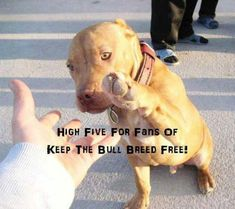 ** high five here** pass it on if you agree