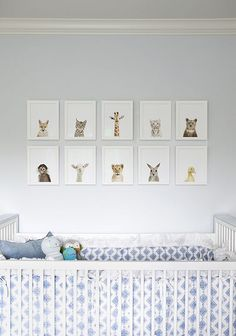 Expectant baby animals lining a soon-to-be nursery wall.