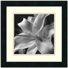 Amanti Art Pure Lily Framed Wall Art