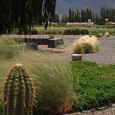 New landscaping in La Estancia de Cafayate, Argentina