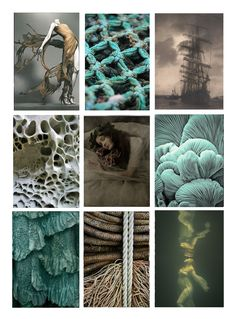 stories-in-the-fog: Moodboards about SHIPWRECK. All that inspirations will lead my textile work. STORIES IN THE FOG.