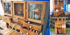 GREAT collection of chicken coop ideas - including this DIY-Backyard-Chicken-Coop from cabinet