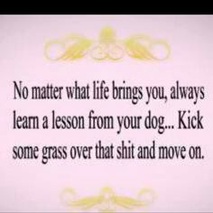 no matter what life brings you, always learn a lesson from your dog... kick some grass over that shit and move on.