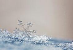 Snowflake by Marcsi Kesjarne on 500px
