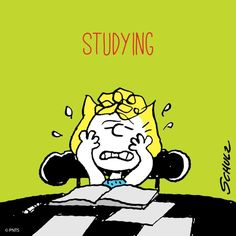 Homework: Enough Already! Snoopy Comics, Fun Comics, Peanuts Cartoon, Peanuts Snoopy, Snoopy School, Sally Brown, Snoopy Pictures, Peanuts Characters, Cartoon Characters