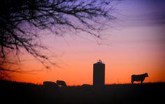 Photograph Iowa Silhouette by Joseph L. Murphy on 500px