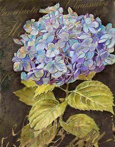 SCRIPTED HYDRANGEA -- Chad Barrett Chad Barrett, Decoupage, Art Carte, Home Flowers, Watercolor Paintings, Watercolour, Shades Of Blue, Hydrangea, Flower Arrangements