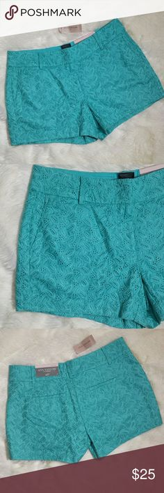 "NWT Ann Taylor Eyelet Teal Shorts Size 4 New with tags, super soft teal aqua Ann Taylor eyelet shorts. Super soft cotton short with eyelet overlay detailing. Side front pockets and faux back slit pockets.  Zip fly with double eye hook clasp and button. Brand new with tags. Tagged a Size 4 Petite but running large. Please see measurements   Measurements  Waist 16"" Inseam 4"" Total length top to bottom 12"" Ann Taylor Shorts"